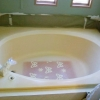 Palmetto Tub - Before