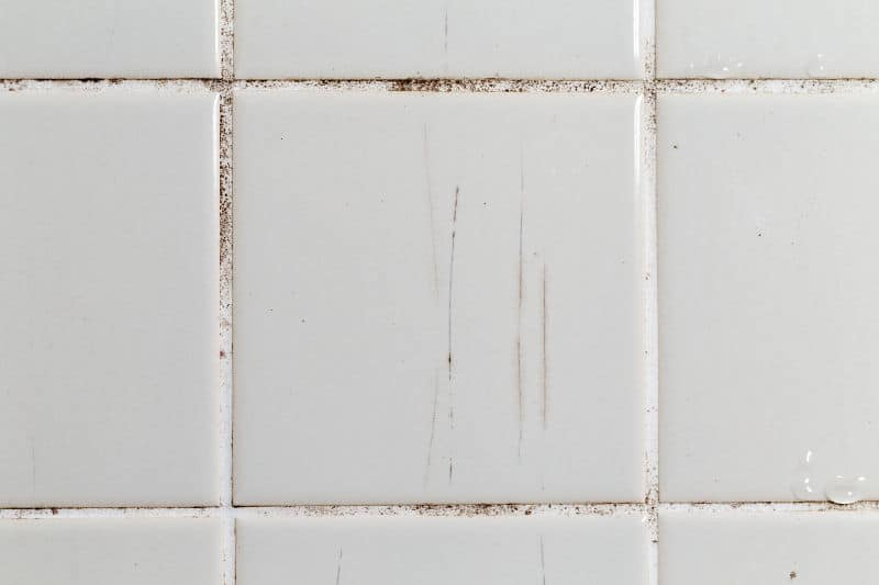 Shower wall with dirty tile and grout